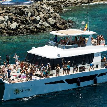 Paseo en catamarán desde Puerto Rico hasta El Perchel
