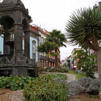 Ausflug Las Palmas + Botanischer Garten + Vulkan